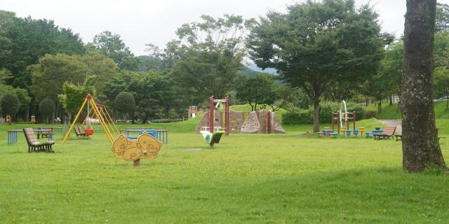 公園、遊具、芝生