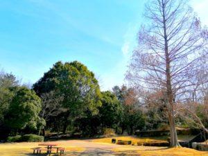 南部丘陵公園-南部丘陵公園 part.4